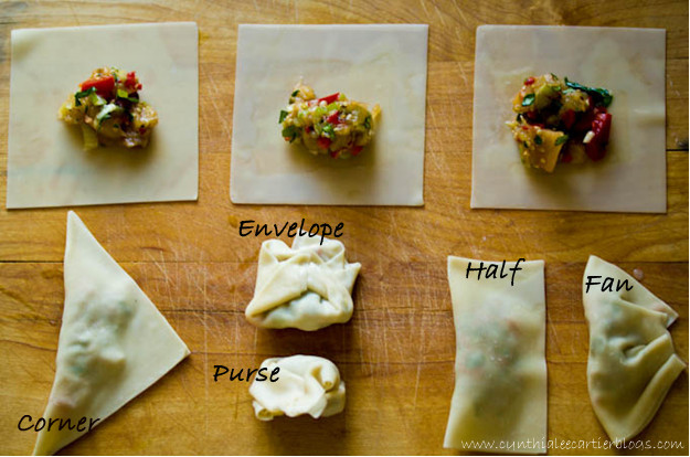 How to Fold Wontons