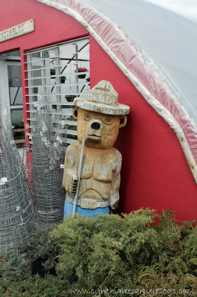 Smokey the Bear, Sprouts Garden Center, Lander, Wyoming
