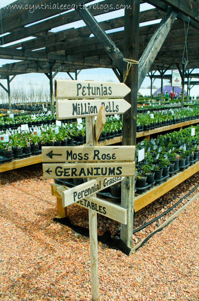 Lander Wyoming, Sprouts Garden Center