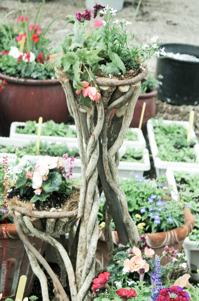 Lander Wyoming, Sprouts Garden Center: Unique Flower Planter