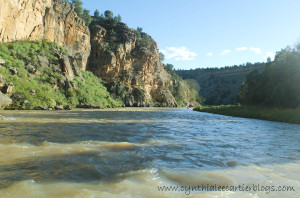 View of the Rio Chama River in New Mexico