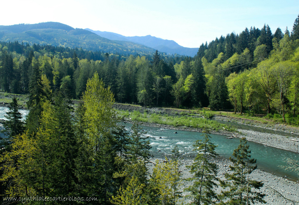 This is a picture of a view from a bridge of the Elwha River, Clallam County, WA